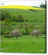 Rhineland-palatinate Summer Meadow With Cherry Trees Acrylic Print