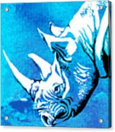 Rhino Animal Decorative Blue Poster 1 - By  Diana Van Acrylic Print