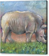 Rhino Acrylic Print by Arline Wagner