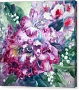 Rhododendron And Lily Of The Valley Acrylic Print