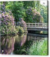 Rhododendrons And Wooden Bridge In Park Acrylic Print