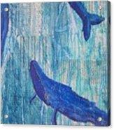 Rhythm And Blues Acrylic Print