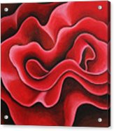 Ribbon Acrylic Print