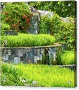 Rice Garden Acrylic Print