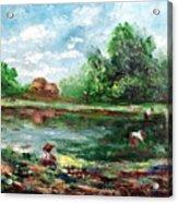 Ricefield Acrylic Print