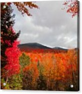 Rich Fall New Hampshire Colors Acrylic Print