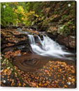 Ricketts Glen State Park Pennsylvania Autumn Waterfall Scenic Acrylic Print