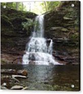 Ricketts Glen Waterfall Acrylic Print
