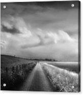 Ride The Moonlight Acrylic Print