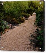 Ridge Trail No2 Acrylic Print
