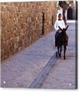 Riding A Donkey Acrylic Print