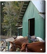 Riding Horses Acrylic Print
