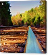 Riding The Rail Acrylic Print
