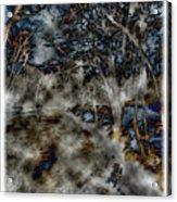 Ridley Creek Acrylic Print