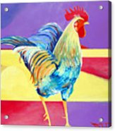 Riley The Rooster Acrylic Print