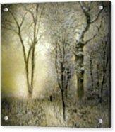 Rimy Forest Windy Daybreak By Laszlo Mednyanszky 1896 Acrylic Print
