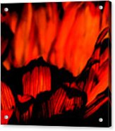 Ring Of Fire Acrylic Print