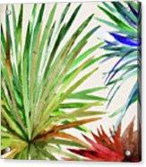 Rio Five Acrylic Print