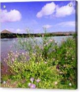Rio Grande De Las Cruces Acrylic Print