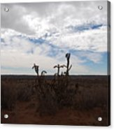 Rio Rancho New Mexico Acrylic Print