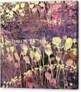 Riotous Spring Acrylic Print