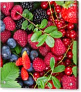 Ripe Of  Fresh Berries Acrylic Print