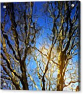 Ripple Tree Acrylic Print