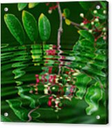 Ripples In The Mirror Acrylic Print