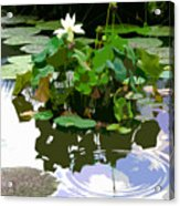 Ripples On The Lotus Pond Acrylic Print