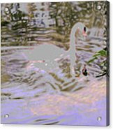 Ripples Subdued Acrylic Print
