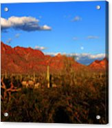 Rising Moon In Arizona Acrylic Print