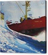 Rising Star Acrylic Print