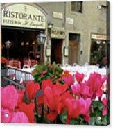 Ristorante Cyclamens Acrylic Print