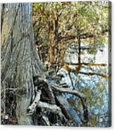 River Art Acrylic Print
