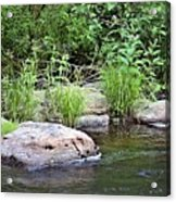 River At Duchesne Falls Acrylic Print