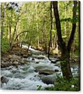 River At Greenbrier Acrylic Print