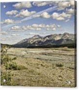 River Bed In Denali National Park Acrylic Print
