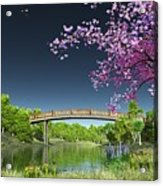 River Bridge Cherry Tree Blosson Acrylic Print
