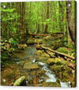 River Crossing On The Maryland Appalachian Trail Acrylic Print