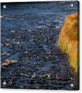 River Edge Acrylic Print