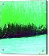 River Grasses 3 Acrylic Print