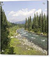 River In Denali National Park Acrylic Print