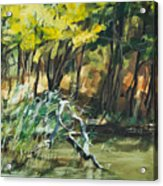 River In Summer Acrylic Print