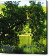 River In The Summer Acrylic Print