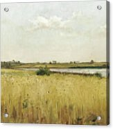 River Landscape With Cornfield Acrylic Print