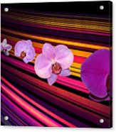 River Of Orchids Acrylic Print
