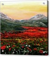 River Of Poppies Acrylic Print