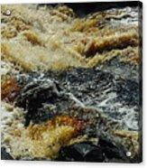 River On The Rocks Acrylic Print