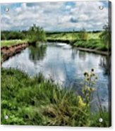 River Tame, Rspb Middleton, North Acrylic Print