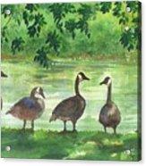 River Walk Or Where Is Waldo Acrylic Print